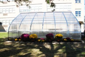 Greenhouse with purple and yellow flowers planted in front