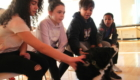 Students pet the black and white dog