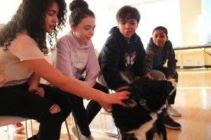 kids pet the dog