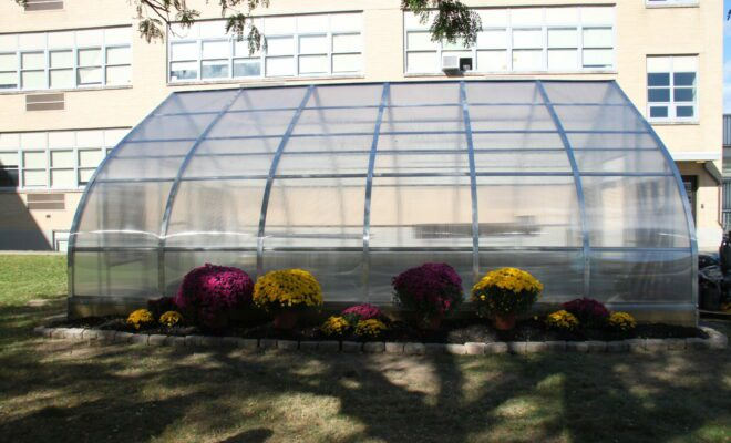 Greenhouse in the courtyard